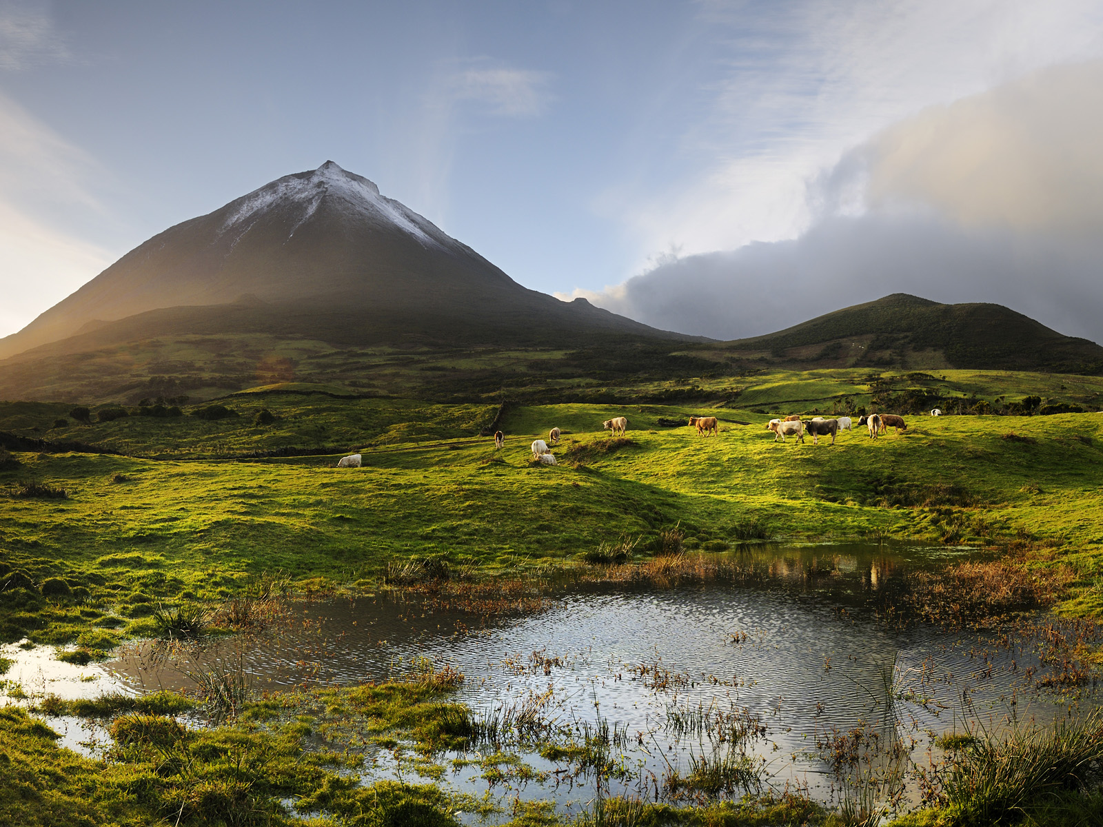 Azores Portugal --- The volcano, 2351 meters high, at the Pico island. His last eruption was in 1720. Azores islands, Portugal --- Image by © Mauricio Abreu/JAI/Corbis